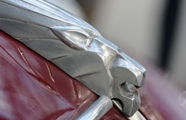 The 'Lion' logo on a 1948 Peugeot 202 Canadienne 'boisee'.
