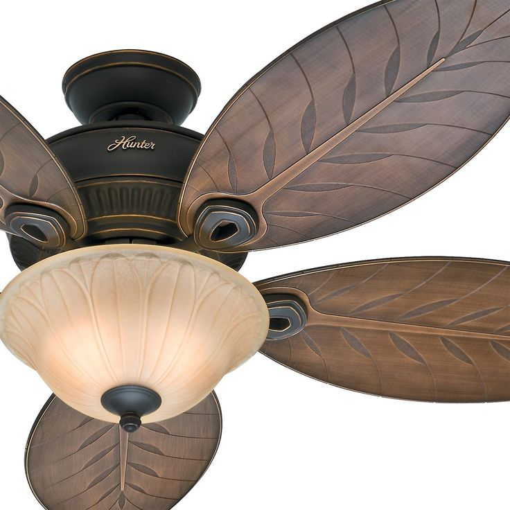 Charming Hunter Tropical Outdoor Ceiling Fans Design Inspirations
