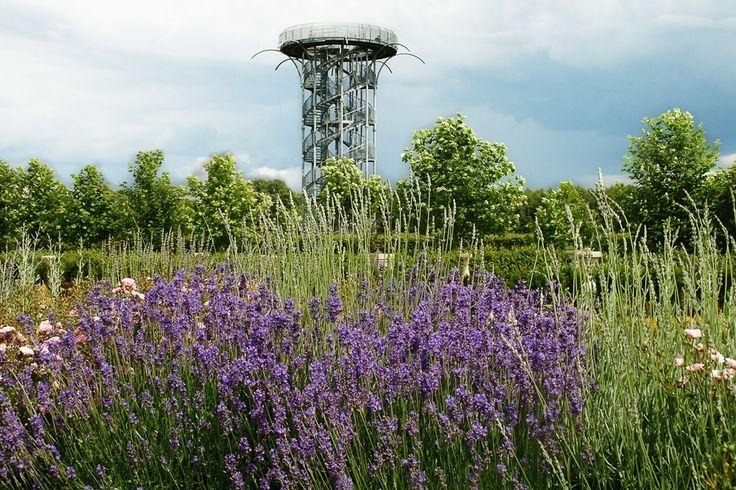 Wieża widokowa w Ogrodach Spectabilis