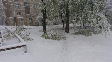 Vreme EXTREMĂ şi în ţările vecine. Sute de regiuni au rămas fără curent electric