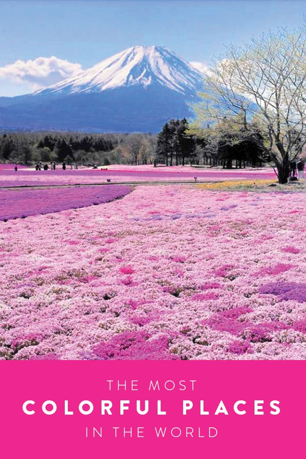 Transport yourself and travel to one of the most colorful places in the world. See the sights from Japan to Italy and India. Absolutely stunning.