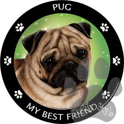 Pug Fawn My Best Friend Dog Breed Magnet http://doggystylegifts.com/products/pug-fawn-my-best-friend-dog-breed-magnet