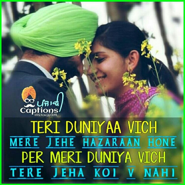 The 368 Best Images About Punjabies On Pinterest