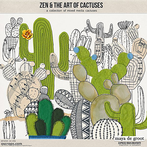Zen and the Art of:  Cactuses