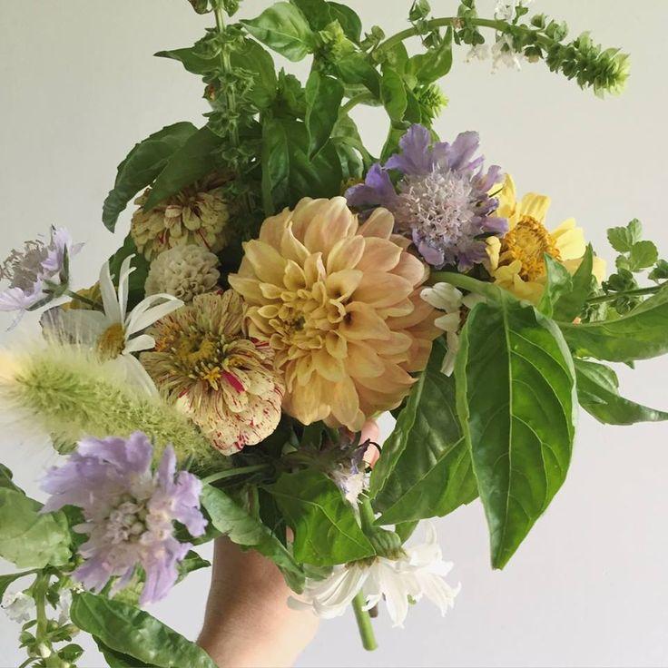 Desktop: Sophie Kurylowicz, Little Triffids Flowers