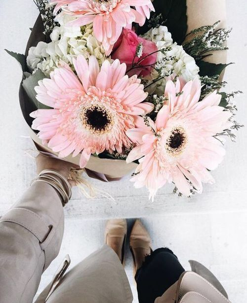 #spring #primavera #flowers #flores #rosas #beautiful #falandodemodaa