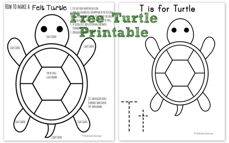 How to make a Felt Turtle {free printable!} from Wildflower Ramblings
