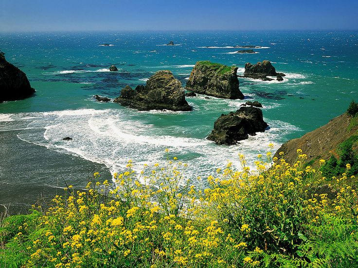 gold beach oregon | Gold Beach, OR : Cape Sebastian photo, picture, image (Oregon) at city ...