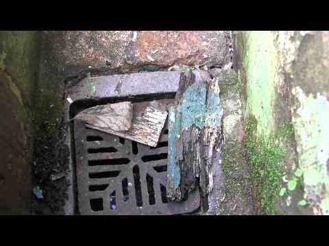 How to clean a sink gully - Gully's outside your home can block up from fat and waste from your kitchen sink.  In this video, we show you how to clear and unblock this gully as well as tips on replacing the grid.   If you have followed these steps and you still have a fault and you're a Bromford customer, give us a call on 0330 1234 034.