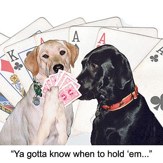Poker Labs
