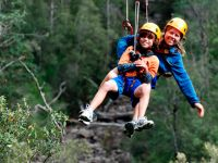 Hollybank tree top adventures - zip line tours