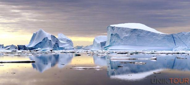 GROENLAND : Cette terre polaire vous permet de profiter d'un concentré des attraits de l'Arctique : baleines, narvals, phoques et autres ours blancs et boeufs musqués viendront probablement croiser votre chemin. Depuis le bateau de croisière, votre kayak, votre traineau à chiens ou en trek, vous aurez toutes les chances pour les observer.