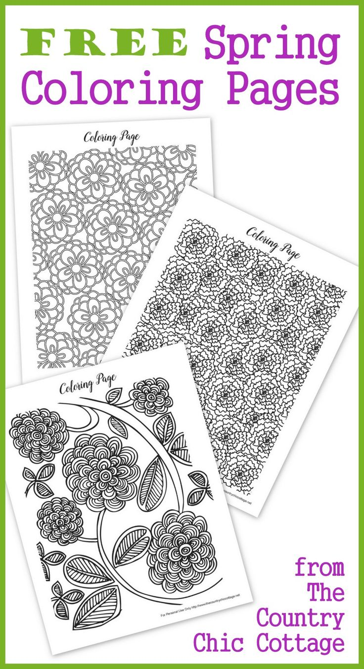 Free coloring pages spring - Download These Free Spring Coloring Pages For Adults Today Color Pretty Flowers With Intricate Designs