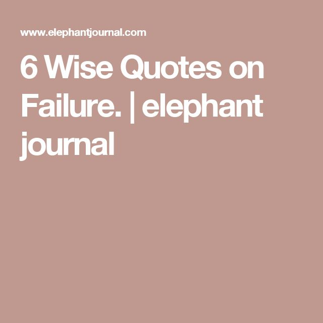 25 Best Failure Quotes On Pinterest: Best 20+ Elephant Quotes Ideas On Pinterest
