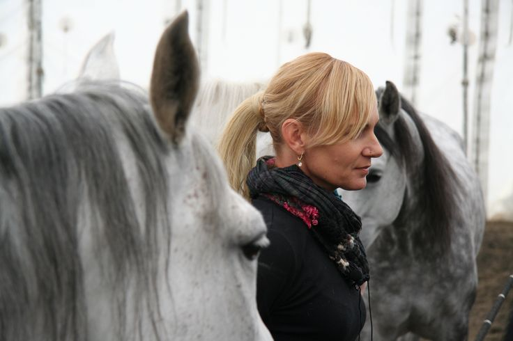 Cavalia's lead liberty rider, Sylvia Zerbini explains techniques she uses to work with the grey Arabian geldings during media day,  in Calgary in 2011. Like great horse TV? Want more stories of horses & people? Visit our Facebook page at: https://www.facebook.com/home.php #sylviazerbini #horsesmouthtv #horse #arabian #gelding #equus #riding #liberty #cavalia