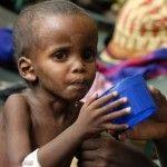 FAO ve guerras principal causa hambre mundial -
