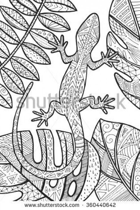 Vector Lizard Tropical Illustration For Adult Coloring Book Hand