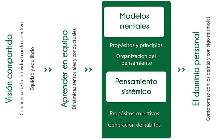 5 cinco disciplinas para el aprendizaje. Peter Senge. Modelo Business life por Santiago Restrepo