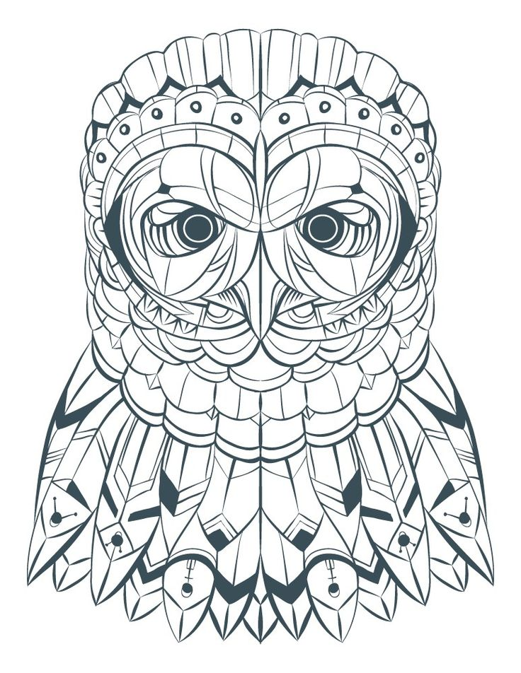 42 best coloriages de hiboux pour adulte owl adult coloring pages images on pinterest adult - Coloriage pour adulte gratuit ...