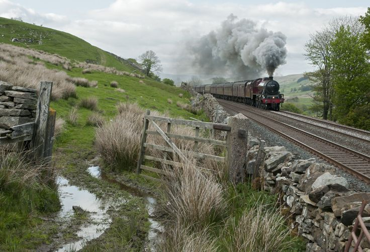 https://flic.kr/p/tog9mj | Galatea near Outhgill | 45699 Galatea with the southbound Dalesman railtour, climbing near Outhgill, 26 May 2015.  I have not been active on Flickr for a while since my elderly Apple computers and operating systems won't support the latest version of Safari needed to run the new Flickr with all the changes.  I can only view images very small and appear unable to make comments.  In truth, I am a bit miffed by it all.  In due course, I will have to decide whether to…