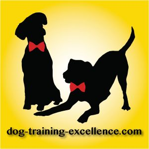 How to stop dog barking? Teach your dog the Quiet command in 5 easy positive training steps. It's simple and fun, reward your dog when he is quiet and...