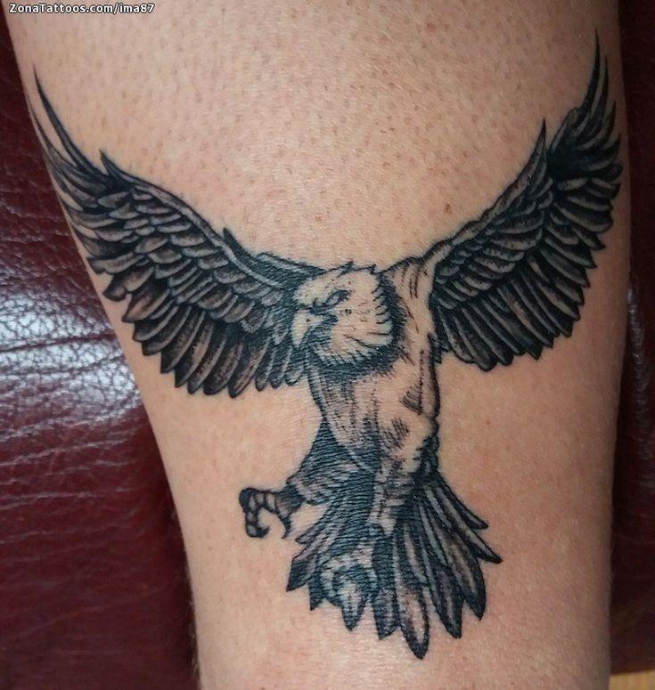 Tatuaje hecho por Imanol Unanue de Guipúzcoa (España). Si quieres ponerte en contacto con él para un tatuaje/diseño o ver más trabajos suyos visita su perfil: https://www.zonatattoos.com/ima87  Si quieres ver más tatuajes de Águilas visita este otro enlace: https://www.zonatattoos.com/tag/360/tatuajes-de-aguilas  Más sobre la foto: https://www.zonatattoos.com/tatuaje.php?tatuaje=109077