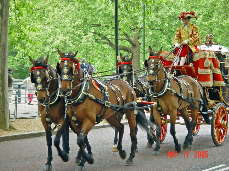 The royal family returning to Buckingham Palace after the opening of Parliament.  London, England.  The Thistle Victoria hotel is right across from Buckingham Palace, and walking distance to the Westminster sights.