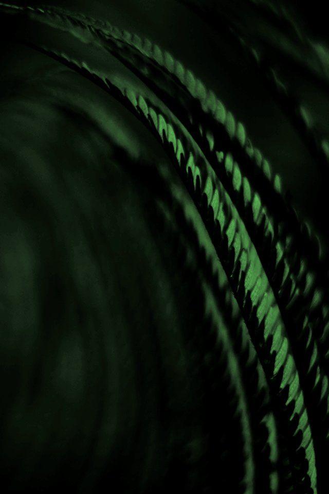 Color Esmeralda   Emerald Green. 270 best Color Emerald Green   Esmeralda    images on Pinterest