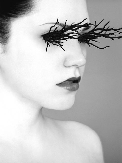 I see, I see, I see.: Forests, Alexandra Bellissimo, Bats For Lashes, Makeup, Alexandrabellissimo, Photos Collage, Eyelashes Exten, Human Natural, Branches