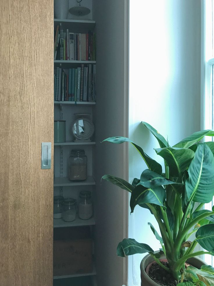 Torsgatan. Skjutdörr till skafferi, ek, snickeri, specialritat. Emelie Holmberg Arkitektur