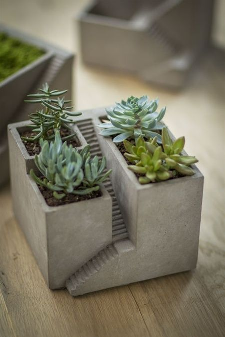 """Cement House Architectural Planter Create your own micro landscape for succulents, wheat grass and more -- or fill with sand and stones for a desktop zen garden. 6.75""""square x 5.25"""" Listing is for planter in first photo (plants not included) - see our other listings for planter variati..."""