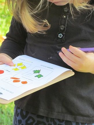 Go on a leaf hunt.  Kids get their own checklist of leaves to find and after you find them glue them together to make a collage.