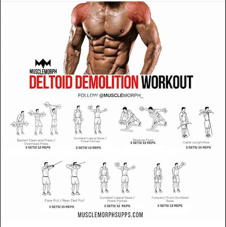 how to build front deltoid