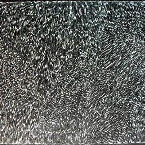 Australian Dreamtime Creations   Tali Tjuta at Mina Mina - Dorothy Napangardi - Acrylic on canvas - 110.5 cm x 80.5 cm - 2007