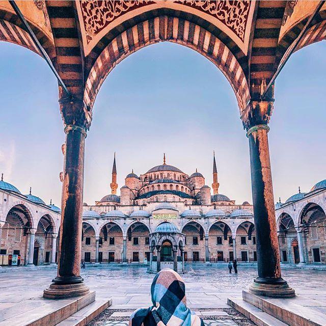 Istanbul ♥️ . . Photo by @vi66nya #travel #beautiful #ic_landscapes #ig_mood #tree #_rsa_nature #wildlife #animal #istanbul #livefolk #exploretocreate