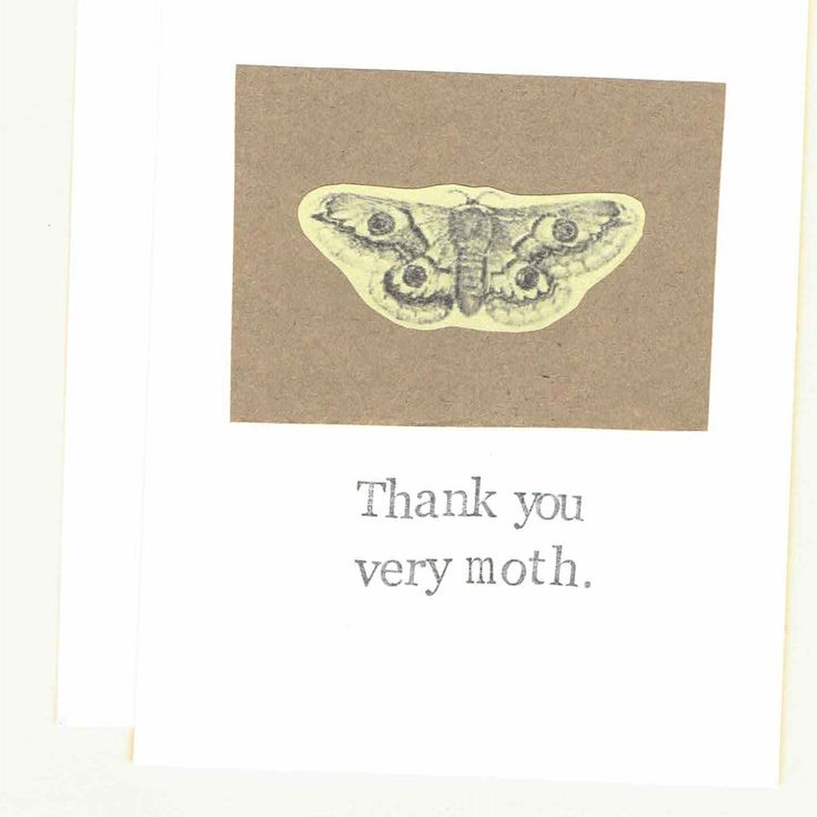 1000+ Ideas About Funny Thank You Cards On Pinterest