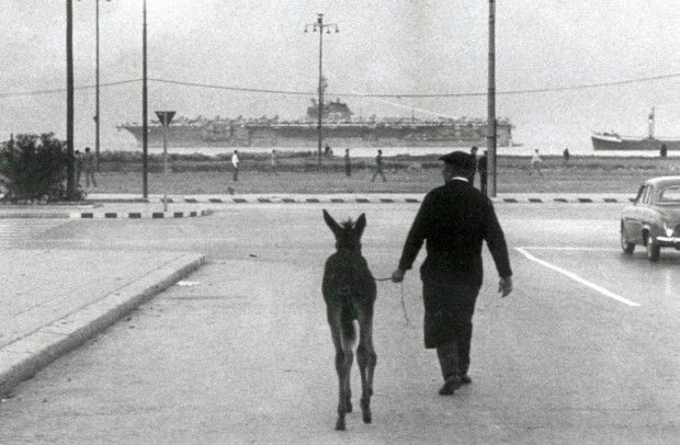 """Enzo Sellerio (1924-2012), italian publisher and photographer. This is one of his favorite images, """"The donkey and the aircraft carrier"""", Palermo 1960"""