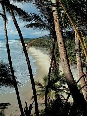 Itacaré (Salvador, Bahia). Zoveel herinneringen...Paradijsje! Hele dagen kijken naar de surfers en chillen.