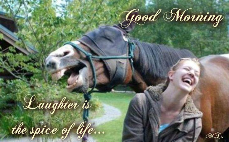Smích je kořením života....