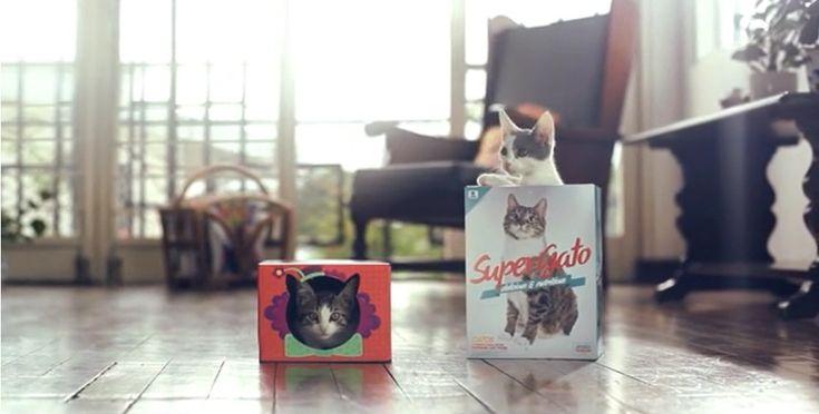 ジリ貧のキャットフードブランド、猫のインサイトを突いたパッケージ変更で売上3割UP | AdGang