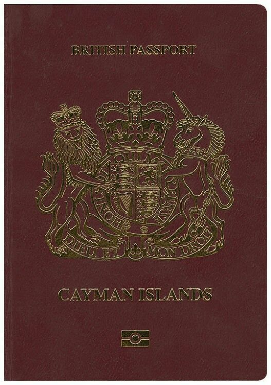 703 best Passports images on Pinterest Passport, Flags and Countries - passport renewal application form