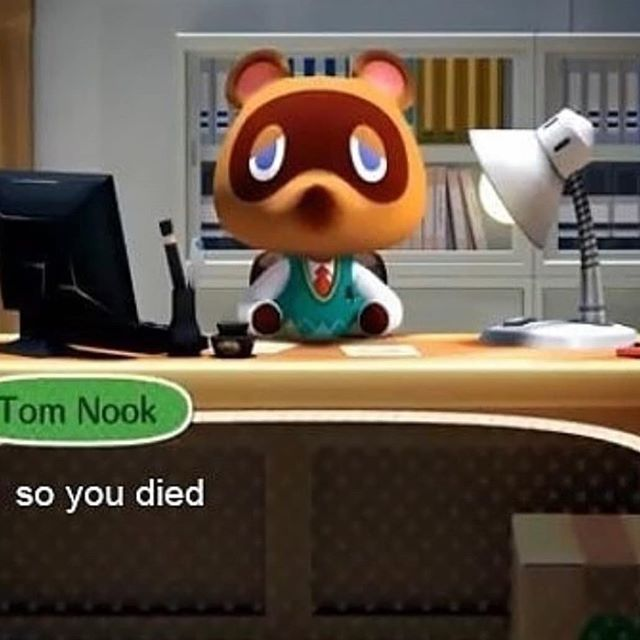 Welcome To Animal Crossing Aminal Crossing Instagram Photos And Videos Animal Crossing Funny Animal Crossing Memes Animal Crossing