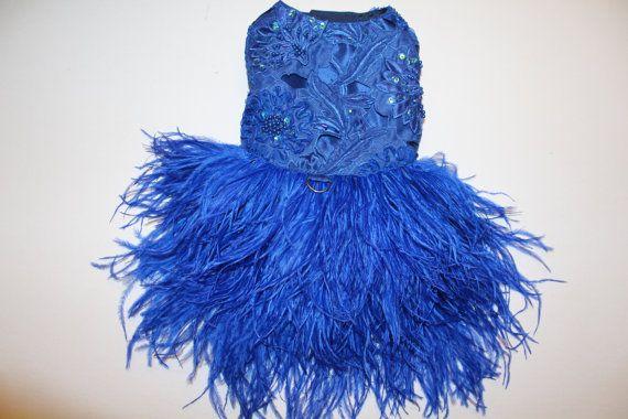Vestido perro fiesta plumas lentejuelas y flor bordada azul zafiro Esta pluma de…
