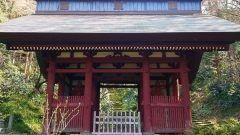 神奈川県鎌倉市大町の妙法寺は鎌倉駅から歩いていくとある日蓮宗の寺院です 苔が美しいお寺としても知られており本堂を通り過ぎたところにある仁王門を通り過ぎると一面苔に覆われた石段が現れます 本堂裏にある一面苔に覆われた苔の石段が美しいので別名苔の寺と呼ばれています  tags[神奈川県]