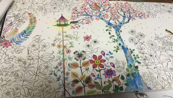 비밀의 정원 안티-스트레스컬러링북_ 컬러링_2-3