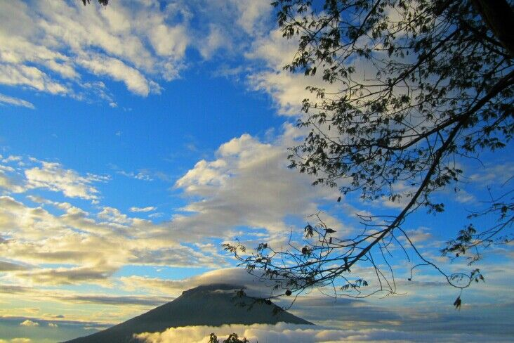 A lovely morning at Mt. Sindoro - Indonesia