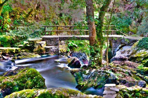 http://www.quetiempo.es/fotos/coristanco/refugio-de-verdes-a-coruna_60157082.jpg