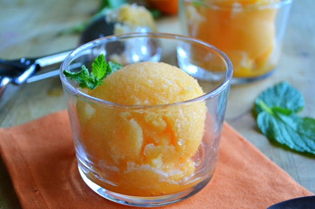tangerine sorbet | I Scream, You Scream | Pinterest