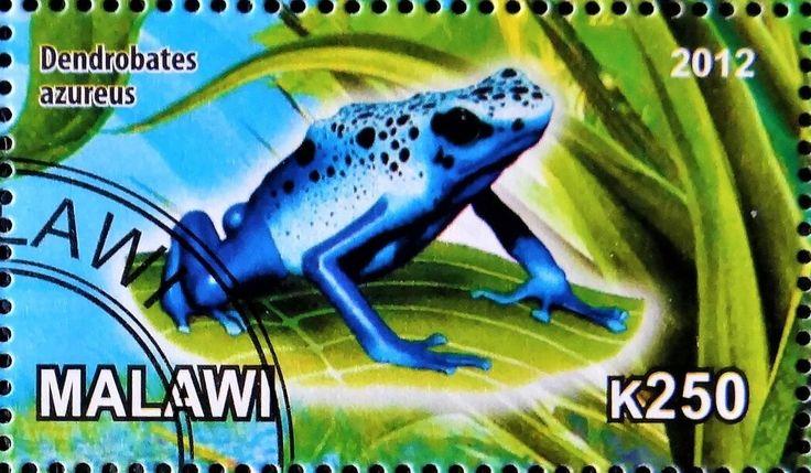 Stamp: Dendrobates azureus (Cinderellas) (Malawi) Col:MW 2012-48/