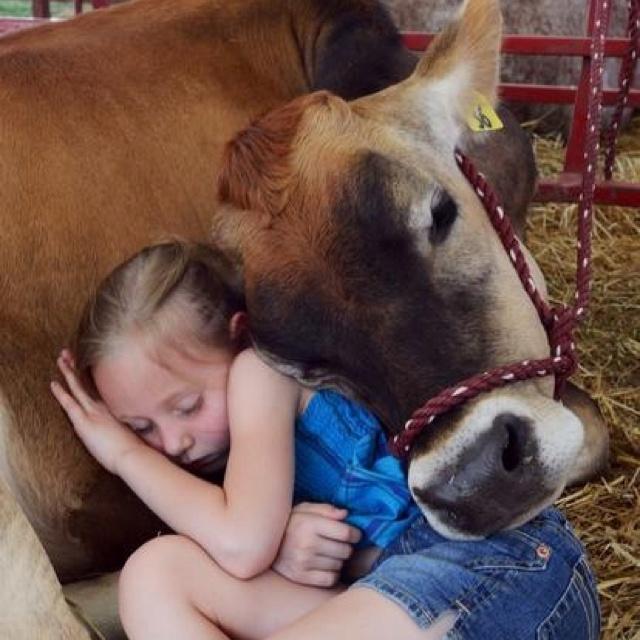 farm buddies.... how's the hamburger sound now?